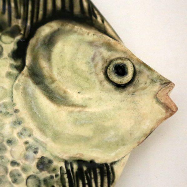 Patera ryba